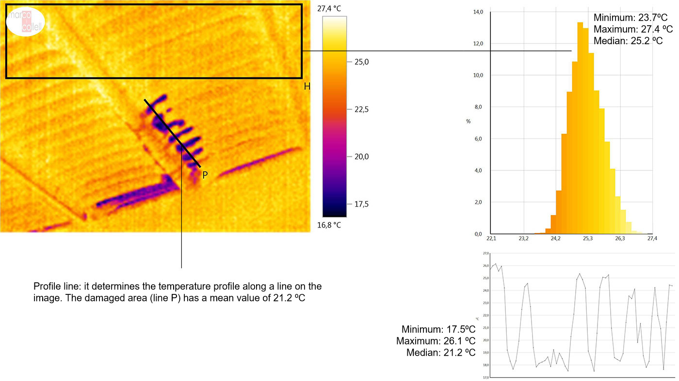 Image 3: Thermal image of a roof in a gestation unit (winter). We can see small areas in which the insulation is deteriorating. Determination of a histogram in an area of the image. Area with a correct insulation (rectangle H) and with a mean value of 25.2 ºC.