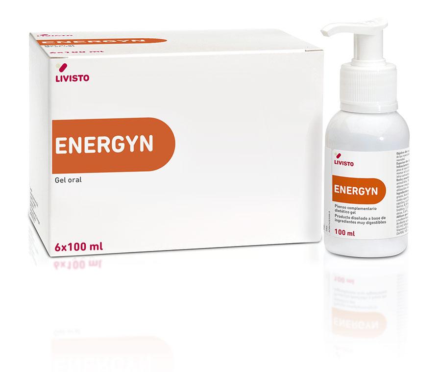 Energyn 6x100 ml